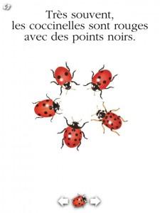 La coccinelle Gallimard jeunesse iPad iPhone 2