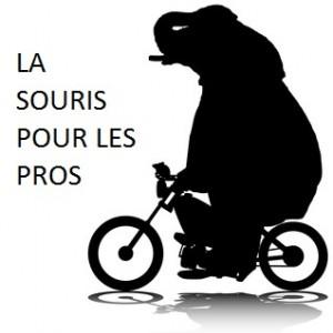 Logo Pour les pros Grand format