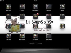 Ecran de souris grise