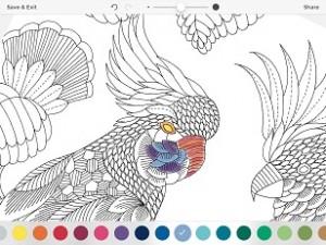 Millie Marotta's Colouring Adventures 1