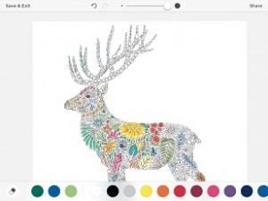 Millie Marotta's Colouring Adventures 3