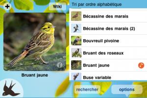 CuiCui application iPhone iPad tablette enfant  La Souris Grise 3