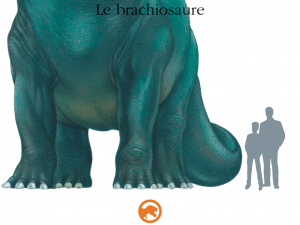 Dinosaure Gallimard Jeunesse iPad iPhone Android La Souris Grise 5