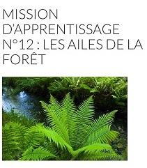 Mission forêt avec Noé 6